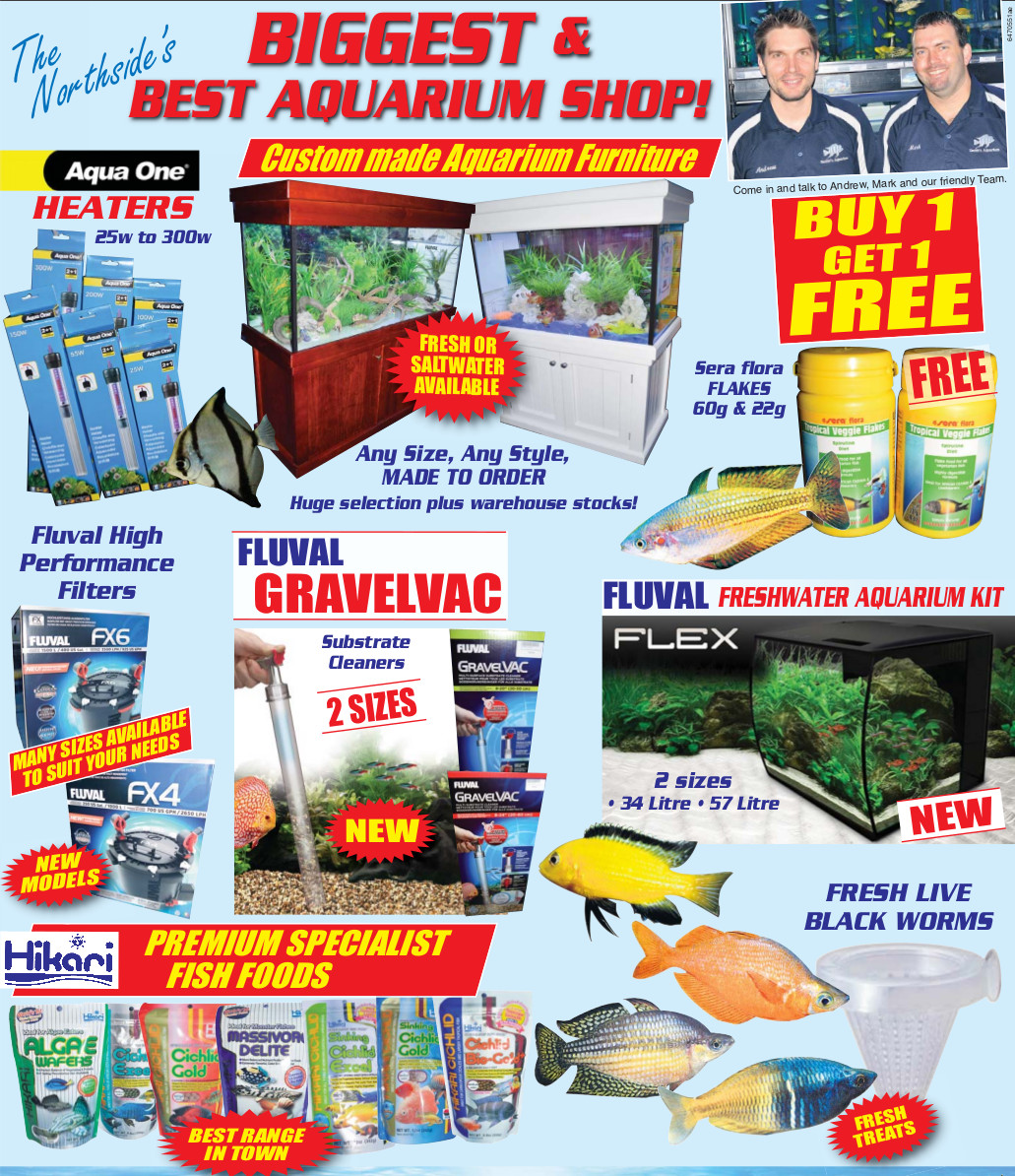 smiths aquarium promotion - Hot Stock
