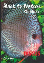 guide-to-discus