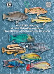 the-cichlid-diversity
