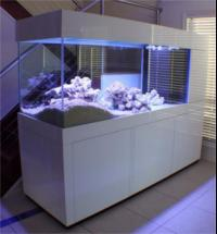 Aquarium Furniture Heavy Duty Cabinets U0026 Hoods